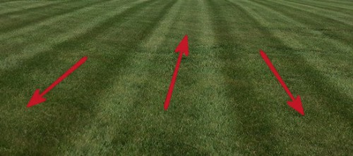 lawn stripe lawn striping mow pattern