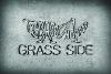 GrassSide_100x67